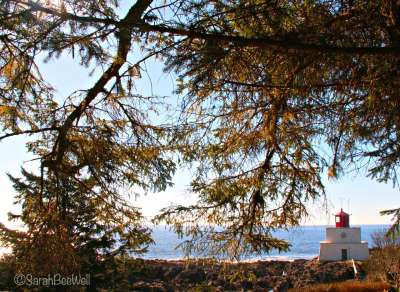 b2ap3_thumbnail_Hiking-Guide-Lighthouse-Loop-2-SarahBeeWell.jpg